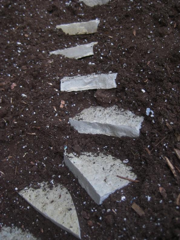 Limestone steppers