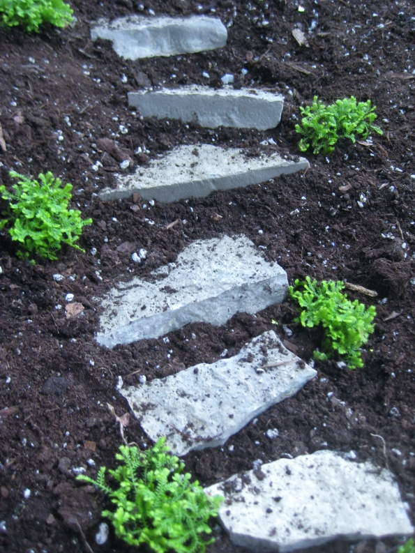 Plantings along stairway