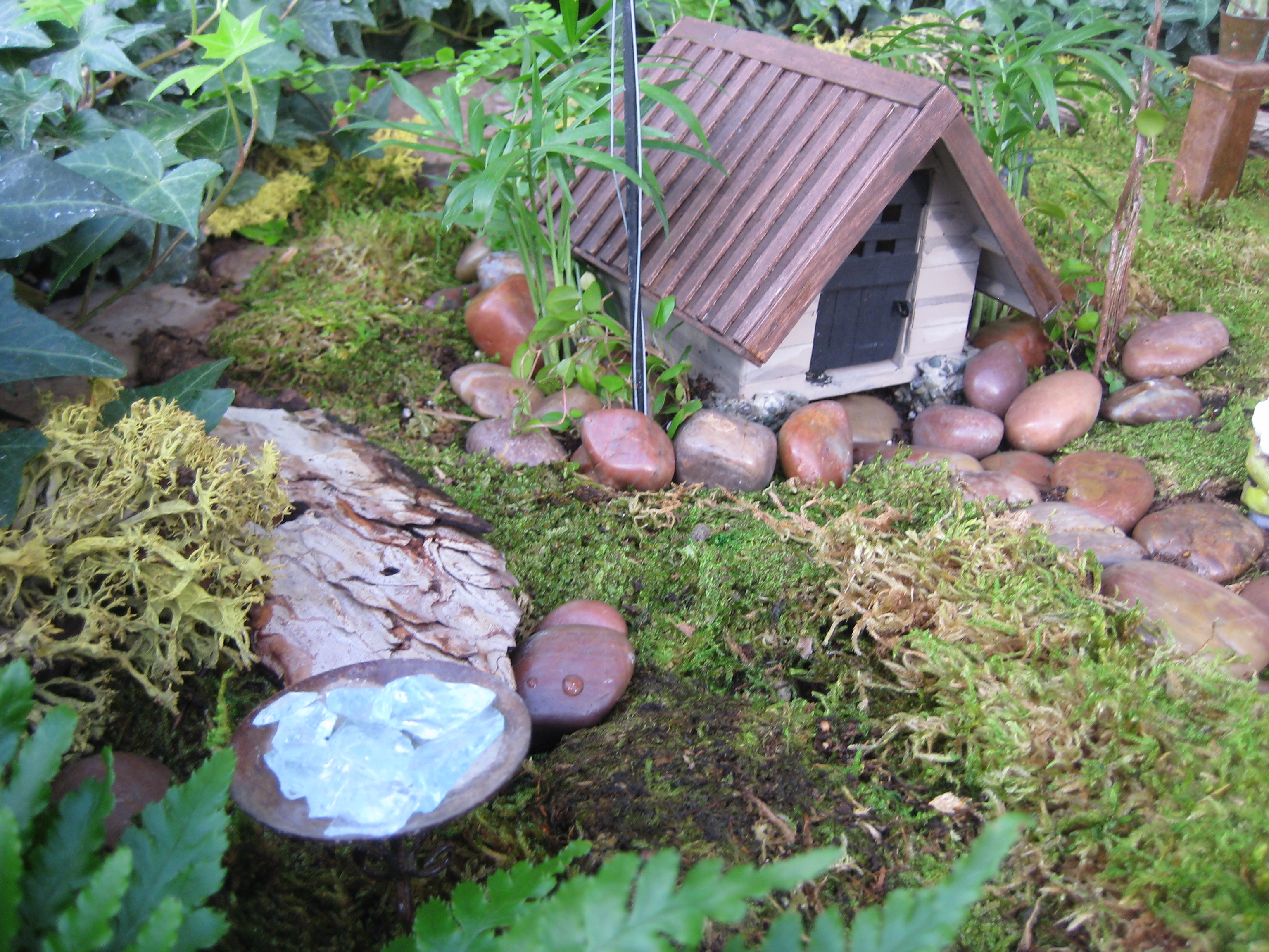 Miniature gardening a cottage in the woods otten bros for Mini garden landscape