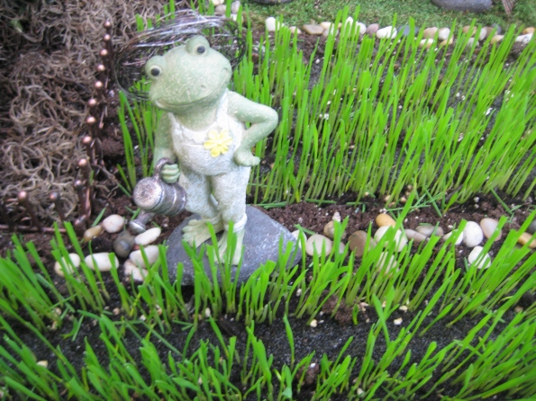 Frog with watering can