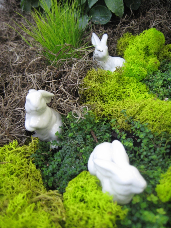 Bunnies in the bushes
